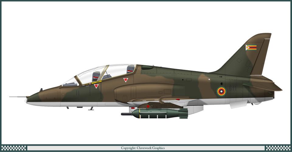 Hawk_Zimbabwe_1.jpg