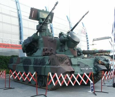 크기변환_03-07-01-폴란드의 로아라 자주대공포 프로토타입.jpg